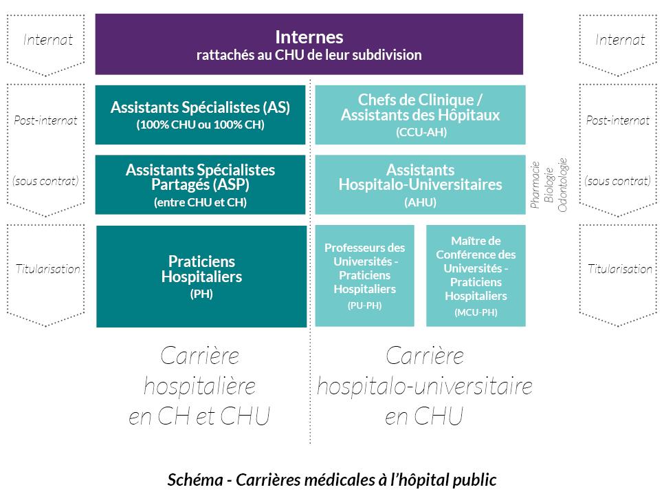 Schéma - Carrières médicales à l'hôpital public